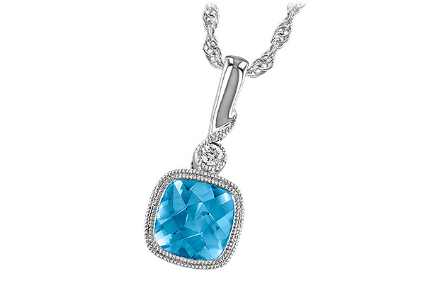 B213-89044: NECK 1.03 BLUE TOPAZ 1.05 TGW